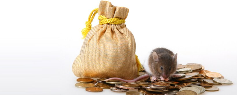 Mouse-Money-820x330.jpg